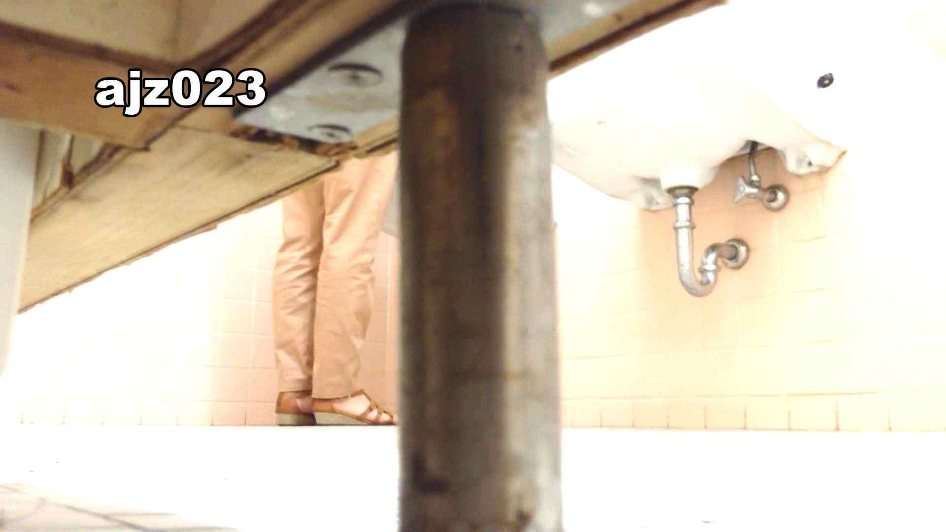 某有名大学女性洗面所 vol.23 OLのプライベート  13pic 4