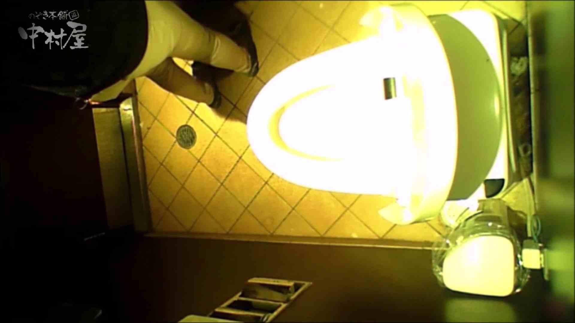 女子トイレ盗撮~某ファミレス編~vol.28 トイレハメ撮り AV無料動画キャプチャ 11pic 4