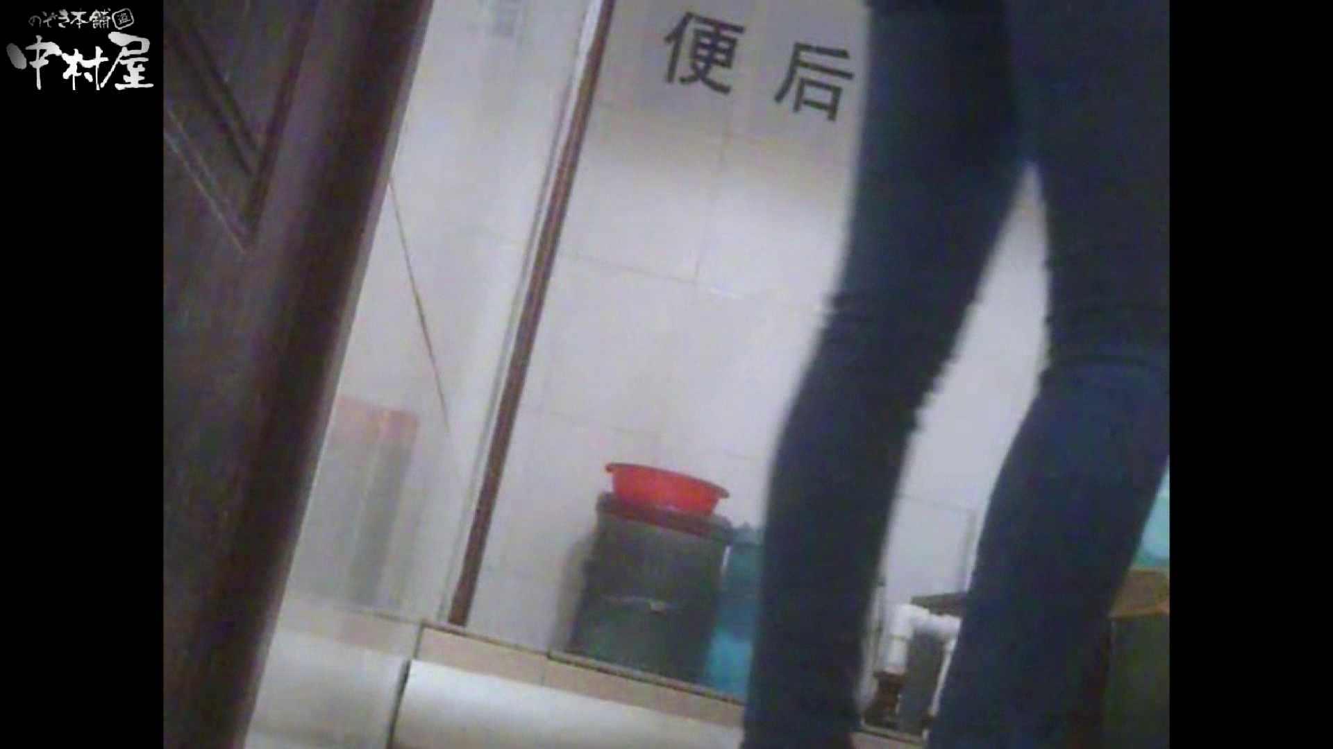 李さんの盗撮日記 Vol.09 トイレハメ撮り ぱこり動画紹介 13pic 4