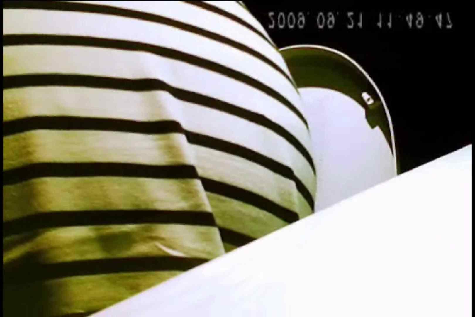 亀さんかわや VIPバージョン! vol.21 OLのプライベート 覗きおまんこ画像 11pic 8