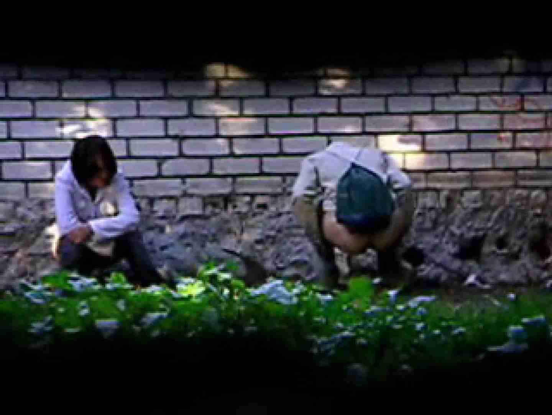 白人さんの野外排せつ盗撮vol.2 OLのプライベート 隠し撮りオマンコ動画紹介 13pic 8