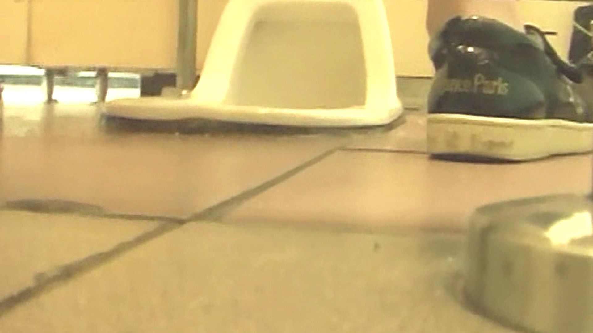 女子トイレ盗撮若い嬢編vol.05 マンコバッチリ ヌード画像 12pic 3