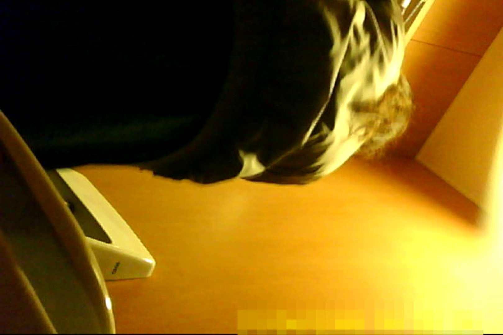 魅惑の化粧室~禁断のプライベート空間~30 お姉さん  13pic 9